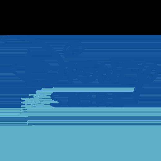 disnepstore.com